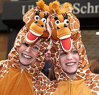 Als Giraffe verkleidete Besucherinnen beim Kölner Rosenmontagszug ©KölnTourismus GmbH, Dieter Jacobi