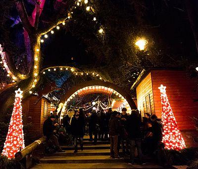 Eingang des Weihnachtsmarktes im Kölner Stadtgarten ©Bilderblitz, KölnTourismus GmbH