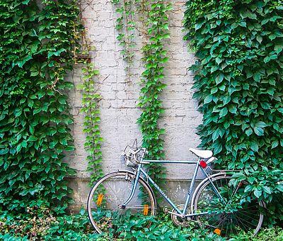 Köln ©Tourismus NRW, Joris Felix